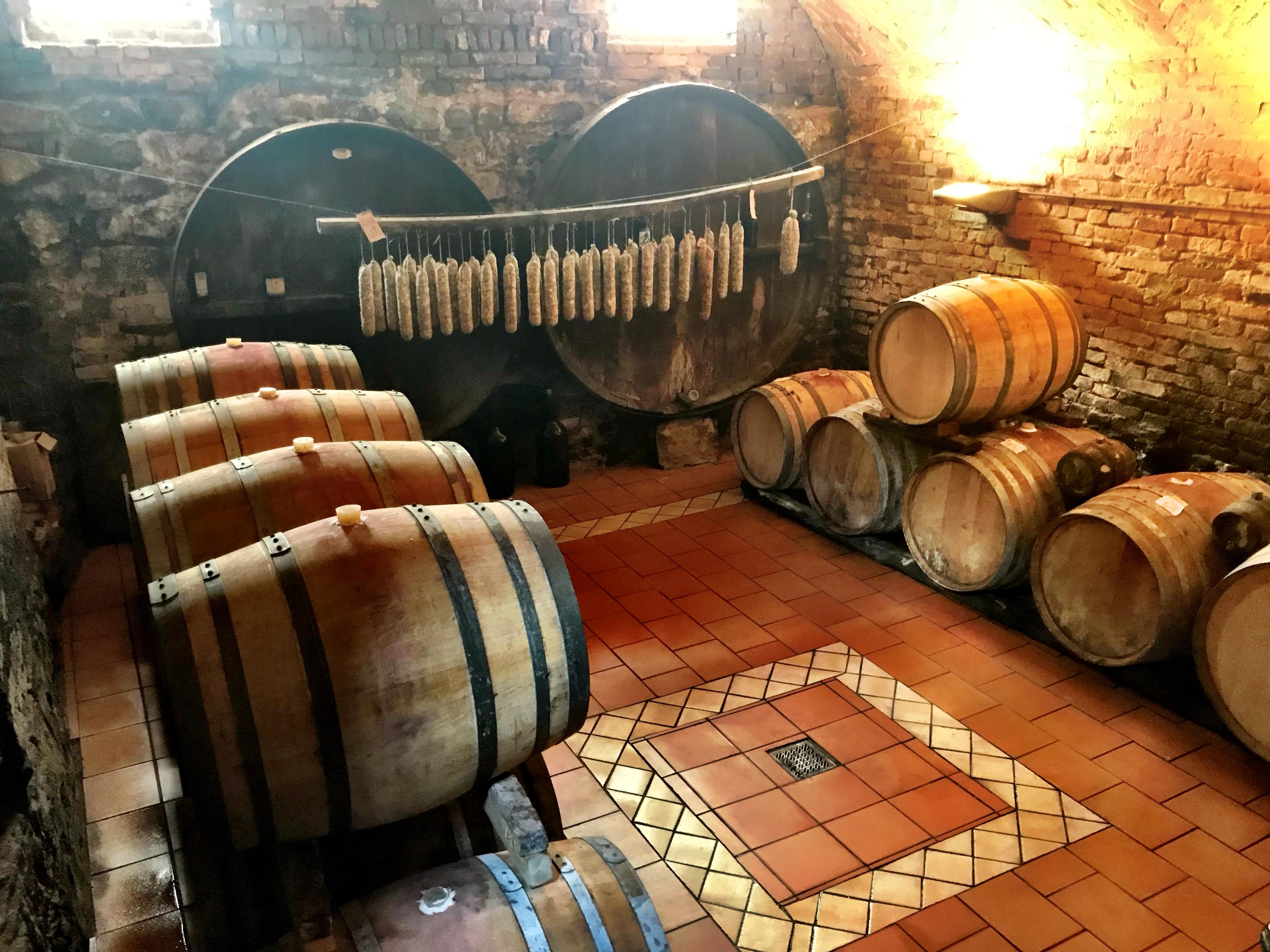 SIP TRIP: Discovering Ruchè inside Castagnole Monferrato's original castle wall