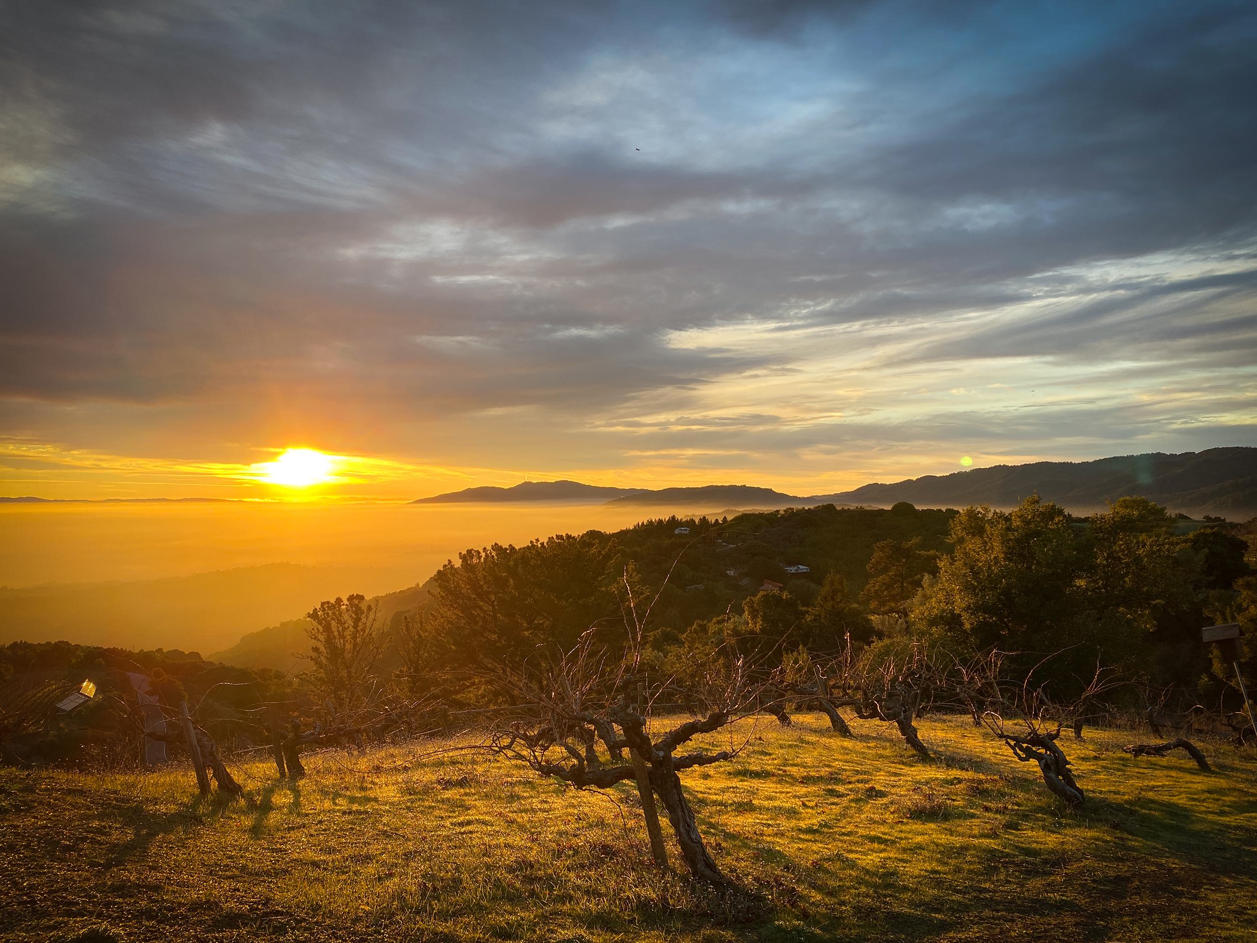 Ridge Monte Bello: On the edge of North America